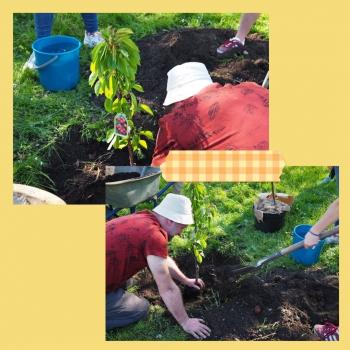 XIV LO - Zielona Czternastka pora na sadzenie 6